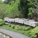 Don'ts in Visiting Singapore Botanic Gardens