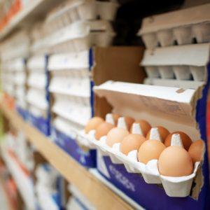 homeland-eggs-1